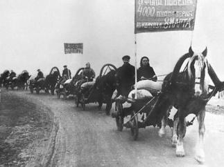 Историк Виктор Земсков: патриотический трудовой подвиг советского крестьянства