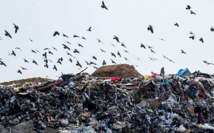 Борьба за мусор