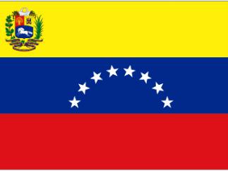 Венесуэльцы за социализм