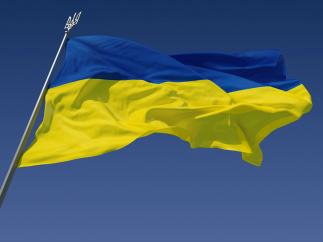 Украина – всё идёт по плану